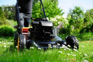 Malibu-Lawn-Maintenance-Mowing-Malibu-Landscapers