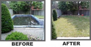 Pool Removal 10