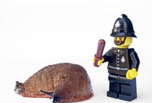 a picture of slug and a miniature of policeman
